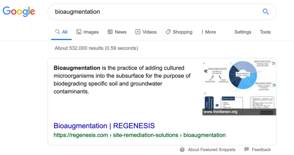 Featured Snippet Website Optimization